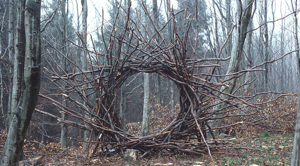 Andy Goldsworthy: Working with Time